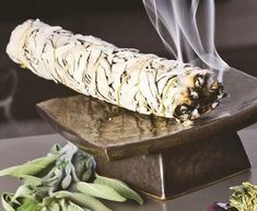 Study: Burning Sage Kills 94% of Airborne Bacteria, Disease-Causing Strains Stay Gone for 30 Days Natural Energy, Natural Healing, Healthy Life, Healthy Living, Health And Wellness, Health And Beauty, Health Tips, Sage Smudging, Burning Sage
