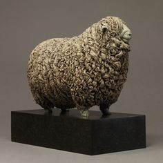 Devon and Cornwall Longwool Sheep (ED) - Nick Bibby - awesome