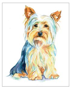 Yorkshire Terrier puppy Yorkie Silky Silkie -  Dog Pet Portrait fine art watercolor print. $15.00, via Etsy.