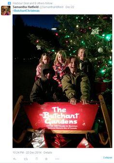 Riding Santa's Sleigh. #ButchartChrsitmas #findchristmashere #butchartgardens Santa Sleigh, Attraction, Daisy, Bloom, Magic, Activities, Christmas Ornaments, Holiday Decor