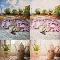230 Free Lightroom Presets You Will Love