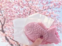"Sakura Taiyaki under the cherry blossoms! Filled with the usual red bean paste PLUS yummy sakura mochi! ""I'm in love and I don't care who knows it!""  #鯛焼き #桜 #伊豆 by nouchali"