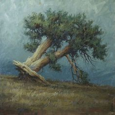 Terry Gardner – Uprooted 28×28