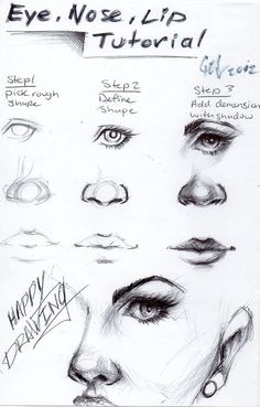 Eye, nose and lip
