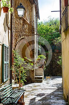 Alley Of The Italian Village - Download From Over 53 Million High Quality Stock Photos, Images, Vectors. Sign up for FREE today. Image: 77738403