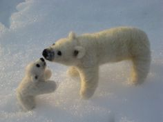 Needle Felted Polar Bear Sculptures by Teddy Bear Review Artist GERRY-Lifelike-Poseable