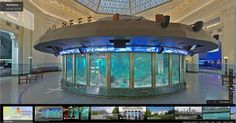 1000 images about field trip to shedd aquarium on Directions to aquarium