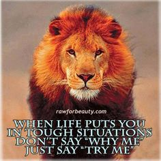 """When life puts you in tough situations don't say """"why me"""" ... just say """"try me"""" instead! #inspiration #happiness www.OneMorePress.com"""