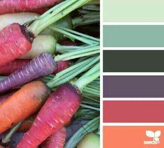 Hermosas zanahorias