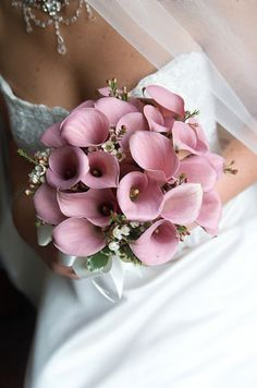 I really like these calla lilies as a part of a bouquet! Not as the only flower though.