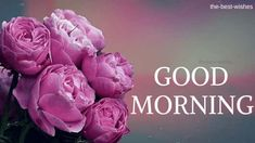 Good Morning Wishes With Pink Roses Bouquet Pictures. Good Morning Beautiful Flowers, Good Morning Nature, Good Morning Roses, Good Morning Prayer, Good Morning Coffee, Good Morning Good Night, Good Morning Wishes Friends, Morning Blessings, Morning Prayers