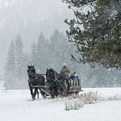 Want to go here for the horse drawn sleigh ride: Big Sky, Montana