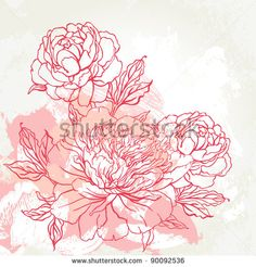 Beautiful peony  bouquet design on beige background. Hand drawn vector illustration.