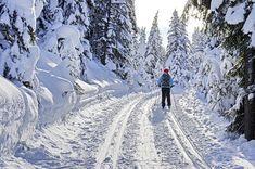 Cross-country skiing at Peter Lougheed Park jumping country skiing resorts Colorado ski Ice climbing Ski Drawing, Mode Au Ski, Ski Jackson, Jackson Hole, Ski Trip Packing List, Ski Canada, Visit Canada, Shot Ski, Ski Lodge Decor