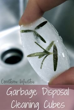 Got a stinky disposal? Learn a super simple and easy way to keep your sink smelling fresh!