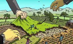 Derecho a la Alimentación Nº 103. Octubre 2016. ¿Responsabilidad penal internacional por el acaparamiento de tierras?