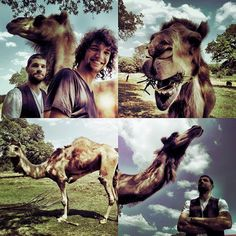 For king and country: Joel,Luke, and Camel:)