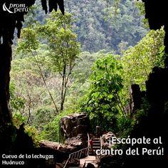 Cave La Lechuza-huanuco