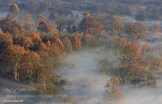 autumn by fabrydamy. Please Like http://fb.me/go4photos and Follow @go4fotos Thank You. :-)