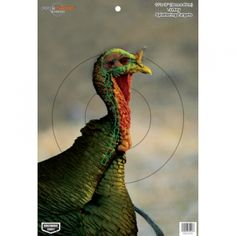 graphic relating to Printable Turkey Head Target referred to as 53 Least complicated Shoting pictures within just 2015 Taking pictures goals, Guns