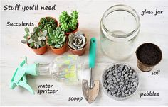 1 Layer glass jar an inch high with pebbles. This provides good drainage for your terrarium.