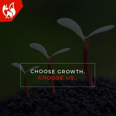 Our passion for Web Design and Development shows in the quality of work we put up for our clients. We only work for GROWTH. Visit: www.redfoxwebtech.com