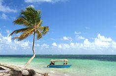 Trinidad and Tobago: a Caribbean paradise #sandybeaches #honeymoon #vacation