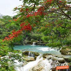 Ven y descubre los rincones de la #HuastecaPotosina, ¡Te encantará!   #WeLoveAdventure  www.rutahuasteca.com  +52 481 381 7358 WhatsApp: 481.116.5900 email: info@rutahuasteca.com #RutaHuasteca #SLP #Ecoturismo #TurismoDeNaturaleza #VisitMexico #Tours #TodoIncluido