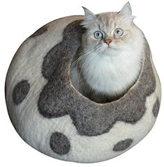 Cat Cave Bed - Handmade Felted Merino Wool House for Cats... https://www.amazon.com/dp/B01637YYM8/ref=cm_sw_r_pi_dp_5Q2Gxb7GJSWNC  20 each
