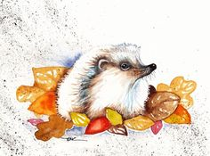Original Watercolour Painting by Be Coventry,Animals,Realism,Autumn Hedgehog