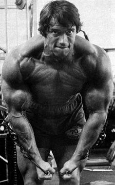 9b93cc687bdc8 Arnold Schwarzenegger - Cable Flyes Lift Strong Live Long™