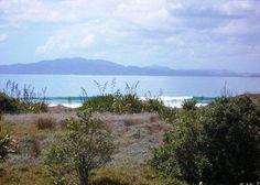 Puka Bach **$140/night last remaining Jan dates** in Tokerau Beach, Karikari Peninsula   Bookabach