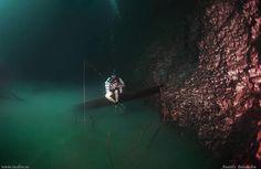 Un bello paisaje submarino.