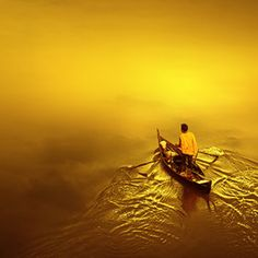 500px / Editors' Choice - the golden sea by Teuku Jody Zulkamaen