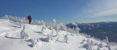 Parc national de la Gaspésie, Photo : SÉPAQ, Steve Deschênes Destinations, Parc National, Mount Everest, Photos, Canada, Explore, Nature, Travel, Mountains