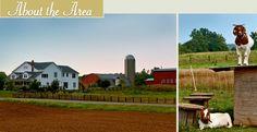Louisville KY BnB Horseback Riding Adventure Getaway Nashville TN Amish