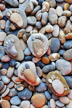 """""""Stone Footprints"""" by talented photographer Iain Blake features animal and human footprints made out of stones of different sizes."""