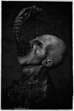 Alien: Covenant (2017)  HD Wallpaper From Gallsource.com