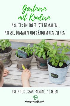 Gardening with young children – tips and tricks ⋆ Miss Broccoli – Mint Birthday Wishes Funny, Youngest Child, Cress, Student Fashion, Broccoli, Tips, Plants, Outdoor, Gardening