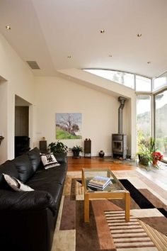 Curved ceiling and wood burning stove - modern - living room - san francisco - Bill Fry Construction - Wm. H. Fry Const. Co.