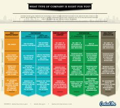 Which Type of Company is Right for You? #business