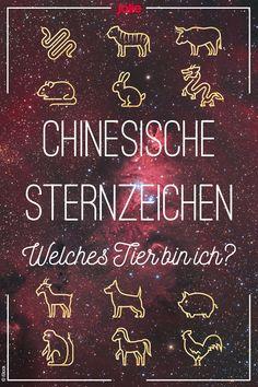 Chinesische Sternzeichen: Welches Tier bin ich?
