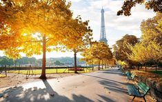 Buy Sunny morning in Paris in autumn by Givaga on PhotoDune. Sunny morning and Eiffel Tower in autumn, Paris, France Paris In Autumn, Springtime In Paris, Paris Torre Eiffel, Paris Eiffel Tower, Kew Gardens, Budapest, Image Paris, Paris Mode, Triomphe