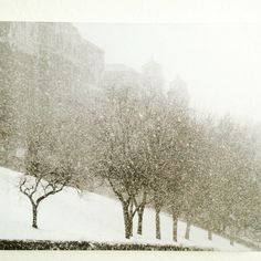 Plaza Impressionism in Snow