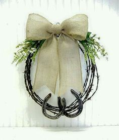 Barbed wire and horse Shoe
