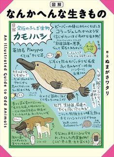 図解 なんかへんな生きもの Platypus, Animal Facts, Weird Creatures, Kids Education, Book Recommendations, Elementary Schools, Mammals, Cute Animals, Illustration