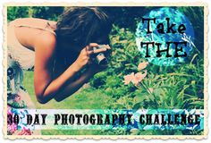 30 Day Photography Challenge!  beginning august 20th & concluding september 18