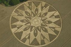 Crop circle at Temple Balsall in 2011. Picture by Steve Alexander of Temporary Temples.