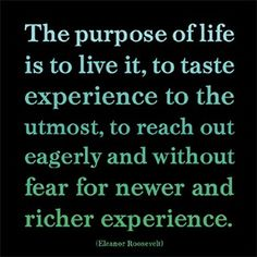 The purpose of life is to live it, to taste experience to the utmost, to reach out eagerly and without fear for newer and richer experience.