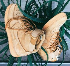 Airforce1 Wheat